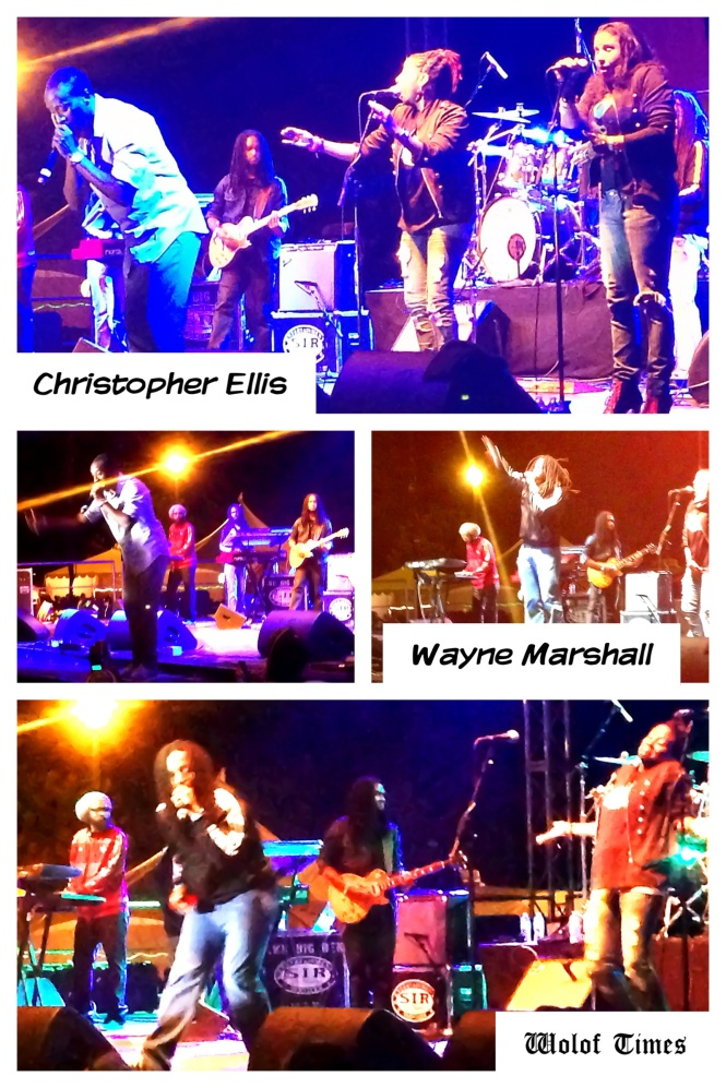 CHRISTOPHER ELLIS, WAYNE  MARSHALL – SIERRA NEVADA WORLD MUSIC FESTIVAL, MENDOCINO (CA) – JUNE 22ND-24TH, 2013