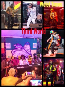 "Third World recently lost their lead singer Bunny Rugs but haven't lost step by replacing him with their long time friend and partner AJ Brown who has a great vocal range. They epitomize music in that they are musicians first and foremost from the Bass, to lead guitar, to drums and hand drums, they are to me the ""Earth, Wind and Fire"" of Reggae. They delivered classic 80s hits such as ""Forbidden Love"" and Lead guitarist Stephen Cat Coore mesmerized the crowd by rendering Bob Marley classics such as ""Redemption Song"" with his Cello. Their lead drummer also electrified the crowd by playing the African Djembe very reminiscent of the West African style of drumming. This was a special performance for them as they're celebrating 40 years of conscious freedom songs and still mourning the death of Bunny Rugs. https://woloftimes.wordpress.com/baby-f-dada-custom-clothing-www-babyfdada-com/ Fitness is 80% Nutrition and 20% Exercise! If you're interested in losing weight, check: https://woloftimes.wordpress.com/herbalife-fitness-nutrition/"